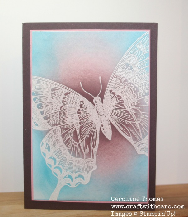 Swallowtail, Emboss Resist, CC&S #170
